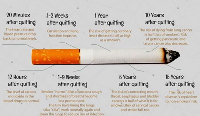 Here Is What Happens With Your Body When You Stop Smoking Page 2 77foods